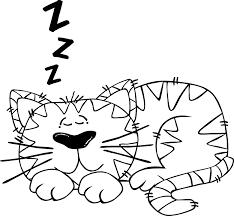 snurkproblemen.info